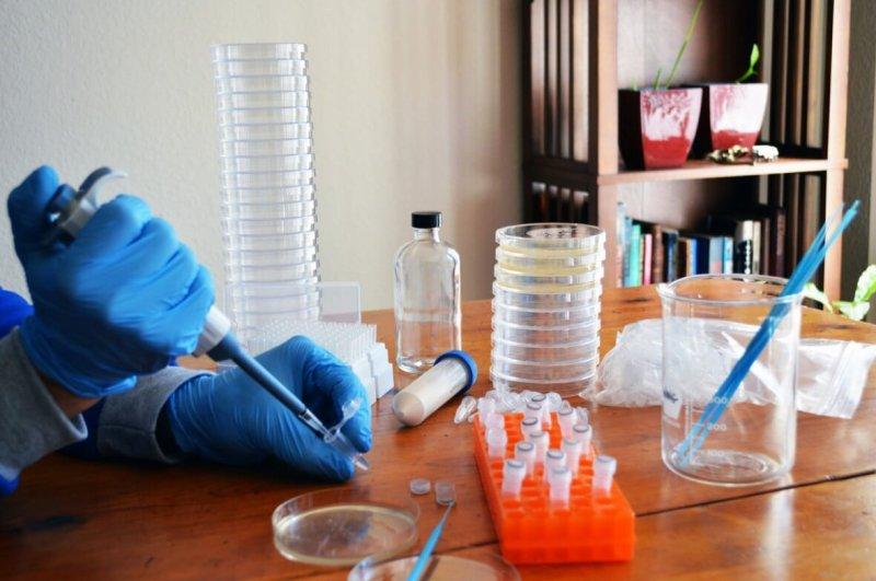 odin crispr bacterial kit