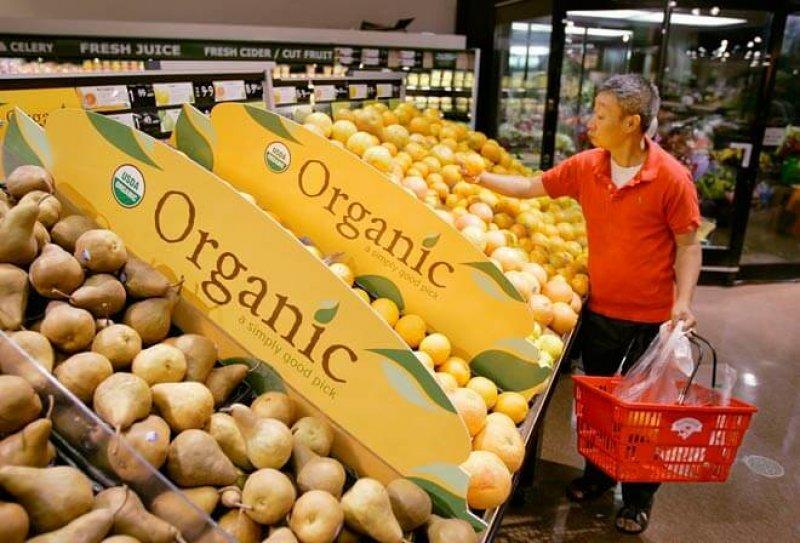 organic food story
