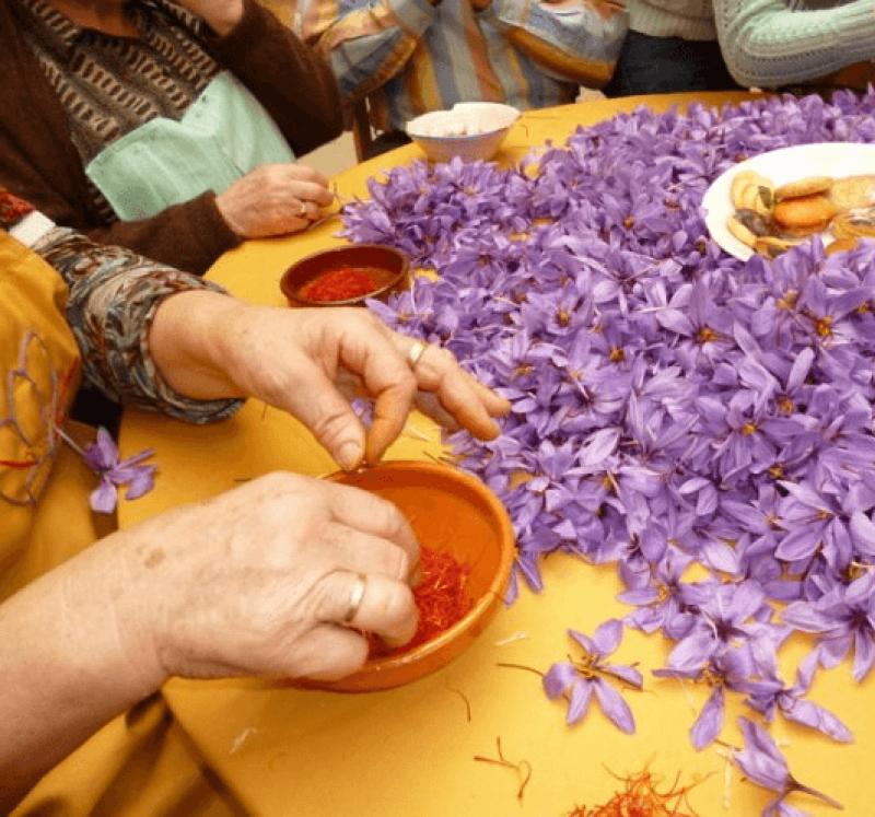 saffron pruning
