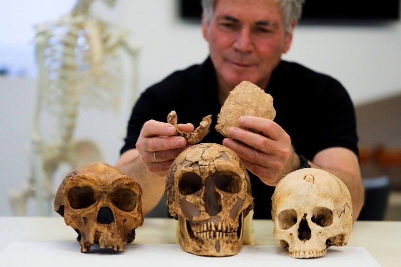 Tel Aviv University Professor Israel Hershkovitz holds what scientists say are two pieces of fossilized bone of a previously unknown kind of early human. Credit: Ammar Awad/Reuters
